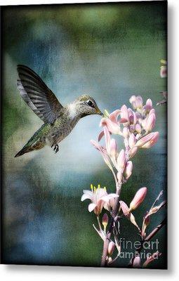 Hummingbird  Metal Print by Saija  Lehtonen