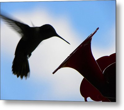 Metal Print featuring the photograph Hummingbird Silhouette by Sandi OReilly