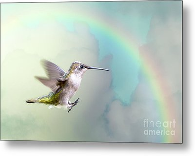 Metal Print featuring the photograph Hummingbird Under Rainbow by Bonnie Barry