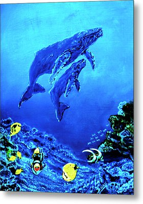 Humpback Whales Hawaii An Reef #14 Metal Print by Donald k Hall
