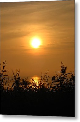 Huron Sunrise Metal Print by Sheryl Burns