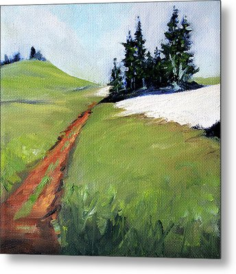 Metal Print featuring the painting Hurricane Hill by Nancy Merkle