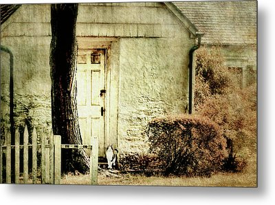 Hurry Home Metal Print by Diana Angstadt