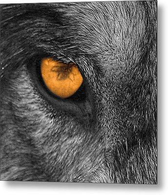 I Am Wolf Metal Print
