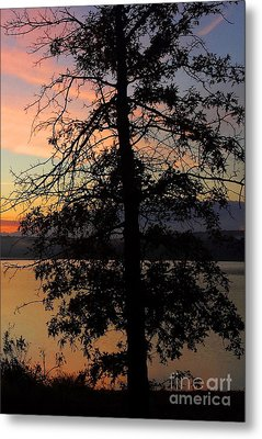 I Saw Her Standing There - Silhouette Of A Dream  Metal Print