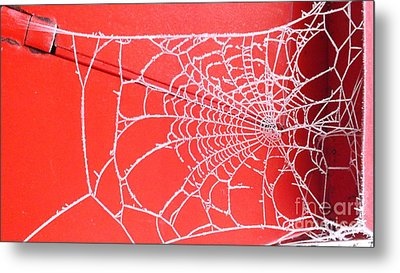 Ice Web Metal Print