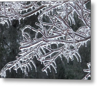 Metal Print featuring the photograph Icy Branch by Jeanette Oberholtzer