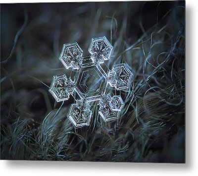 Metal Print featuring the photograph Icy Jewel by Alexey Kljatov