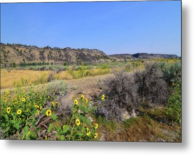 Metal Print featuring the photograph Idaho Landscape by Bonnie Bruno