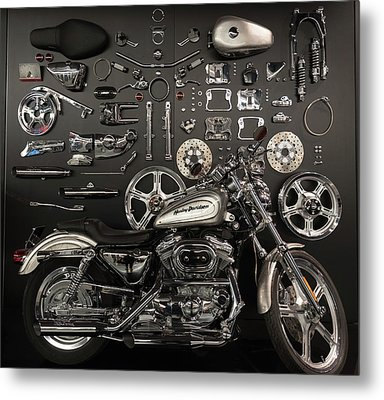 If Bling Is Your Thing Metal Print by Randy Scherkenbach