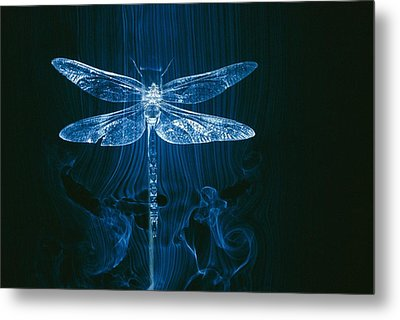 Imagery Of A Dragonfly In A Wind Tunnel Metal Print