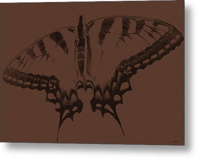 Imprints Of A Butterfly Metal Print by Debra     Vatalaro