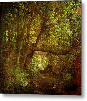 In A Forest Metal Print by Inesa Kayuta