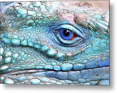 In His Eye Metal Print by Iryna Goodall