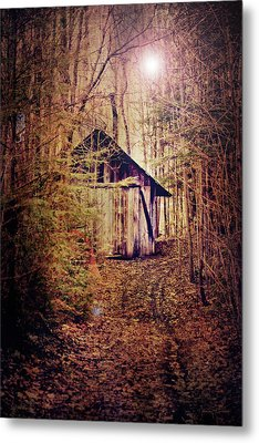 In The Sugar Bush Metal Print