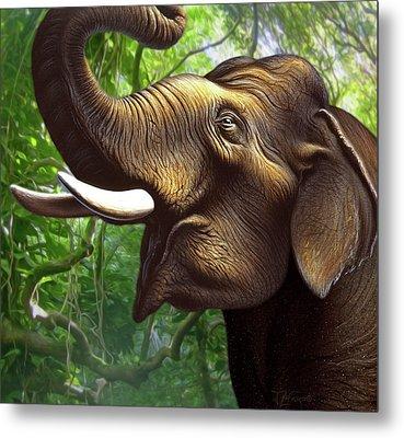 Indian Elephant 1 Metal Print by Jerry LoFaro