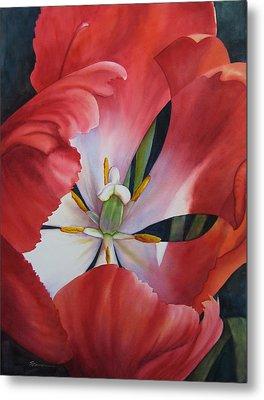 Inside A Tulip Metal Print by Sue Zimmermann