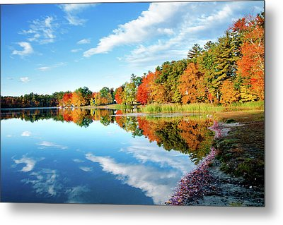 Metal Print featuring the photograph Inspiration by Greg Fortier