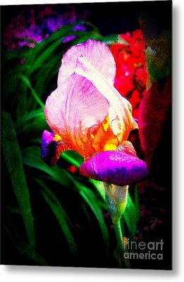 Iris Glow Metal Print by Janine Riley