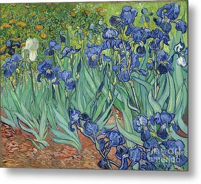 Irises By Vincent Van Gogh Metal Print by Esoterica Art Agency