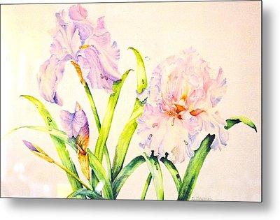 Irises Metal Print by Nancy Newman