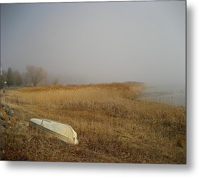 Irish Mist Metal Print by Sheryl Burns