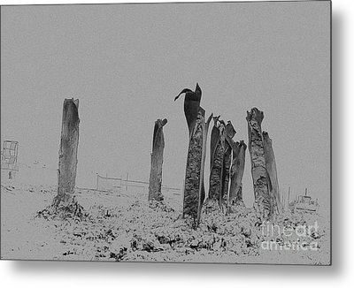 Ironhenge Metal Print by Fred Lassmann