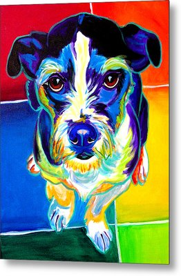 Jack Russell - Pistol Pete Metal Print by Alicia VanNoy Call