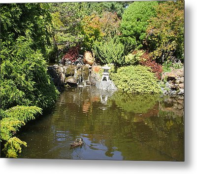 Japanese Garden At The Botanical Gardens In Hobart Tasmanis Metal Print by Bethwyn Mills