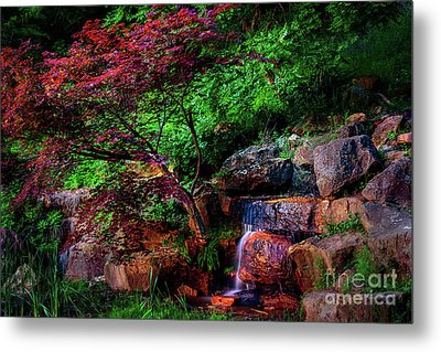 Japanese Maple At Honor Heights Park Metal Print