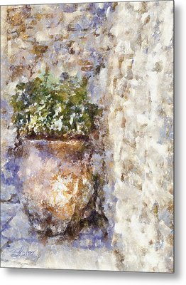 Jardiniere Metal Print by Shirley Stalter