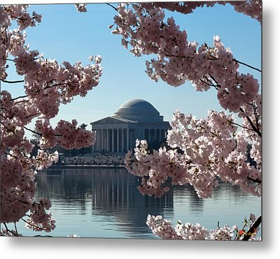 Jefferson Memorial At Cherry Blossom Time On The Tidal Basin Ds008 Metal Print by Gerry Gantt