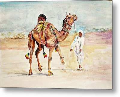 Jewellery And Trappings On Camel. Metal Print