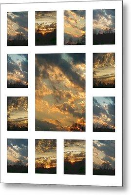 Joy In The Skies  Metal Print by Robin Coaker