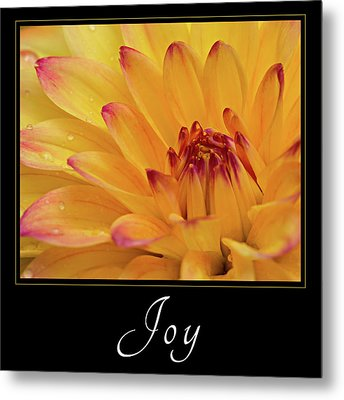 Metal Print featuring the photograph Joy by Mary Jo Allen