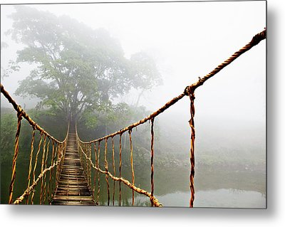 Jungle Journey Metal Print