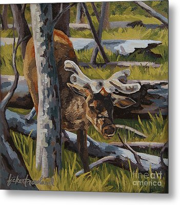 Metal Print featuring the painting Just A Peek by Erin Fickert-Rowland