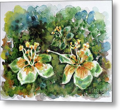 Kapok Flowers  Metal Print by Zaira Dzhaubaeva