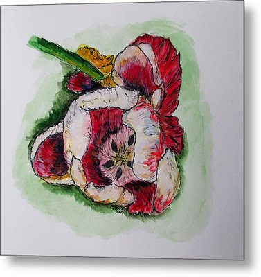 Kimberly's Flowers Metal Print by Clyde J Kell