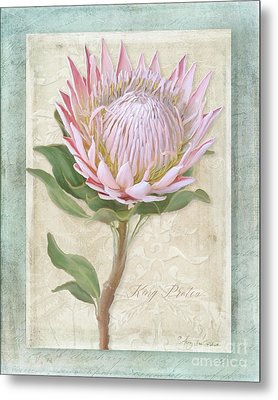 Metal Print featuring the painting King Protea Blossom - Vintage Style Botanical Floral 1 by Audrey Jeanne Roberts