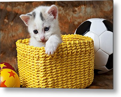 Kitten In Yellow Basket Metal Print by Garry Gay