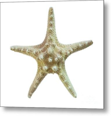 Knobby Starfish Metal Print