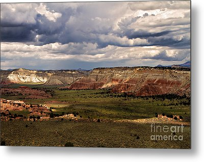 Kodachrome  Metal Print by Lana Trussell