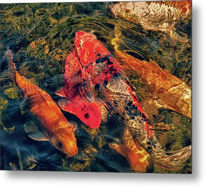 Koi Fish Fresco One Metal Print