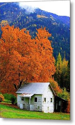 Kootenay Autumn Shed Metal Print