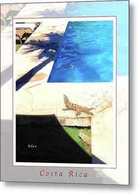 la Casita Playa Hermosa Puntarenas Costa Rica - Iguanas Poolside Greeting Card Poster Metal Print