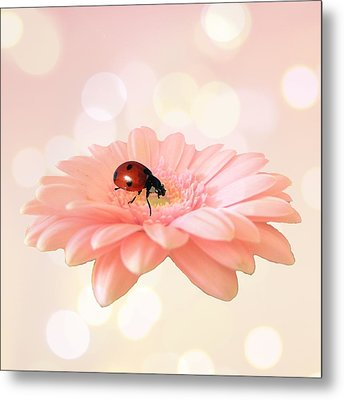 Lady On Pink Metal Print by Sharon Lisa Clarke