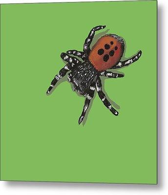 Ladybird Spider Metal Print by Jude Labuszewski