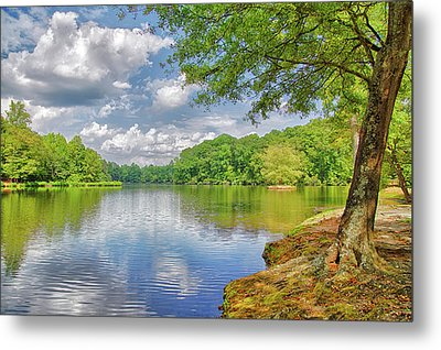 Lake Haigler 2014 01 Metal Print