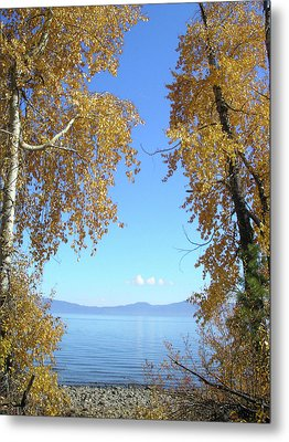 Lake Tahoe Autumn Metal Print by Connie Handscomb